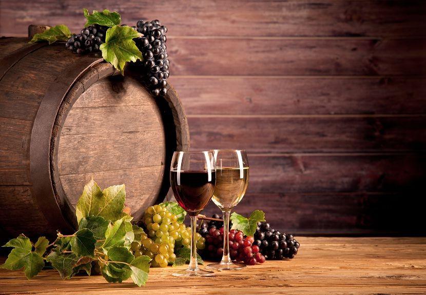 Еда и напитки 366