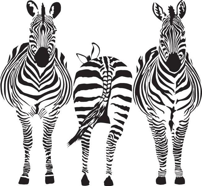 Животные 116