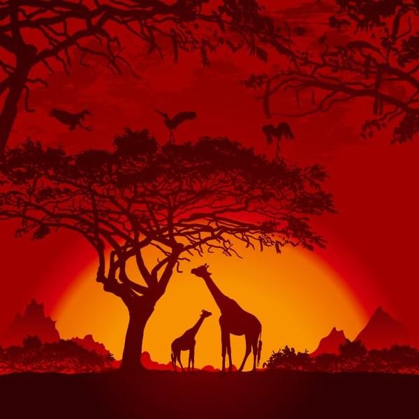 Животные 157