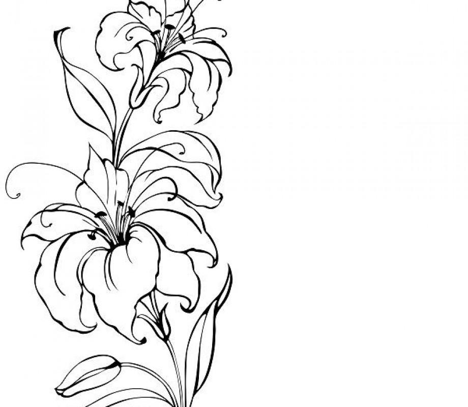 Иллюстрации 10
