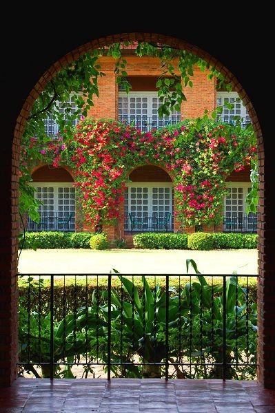Вид из окна 21