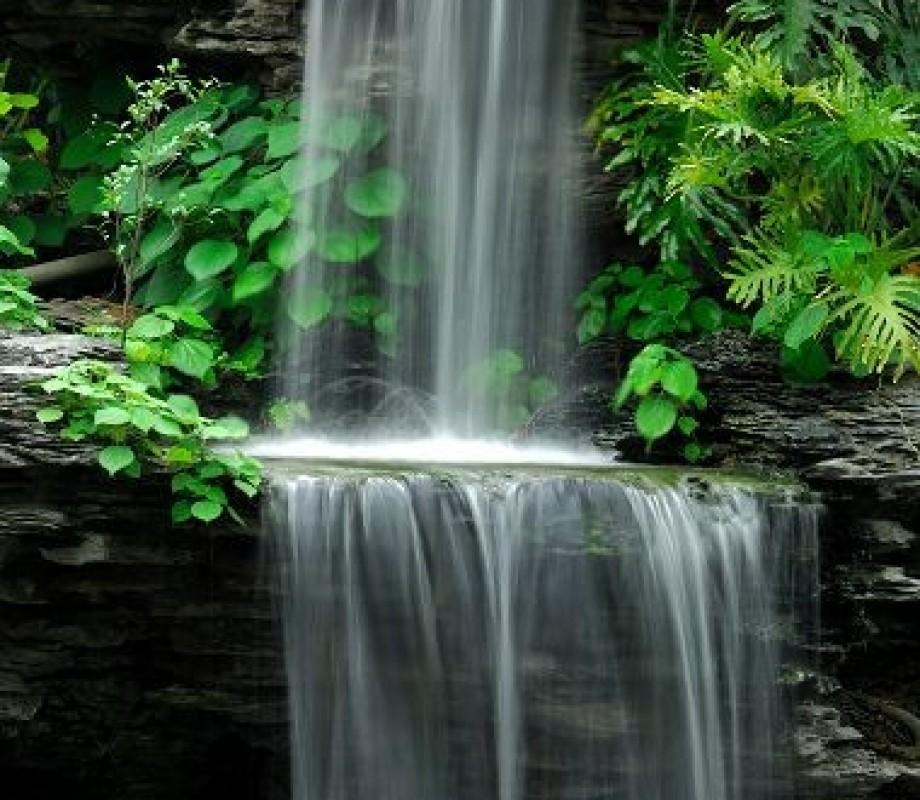 Природа 683