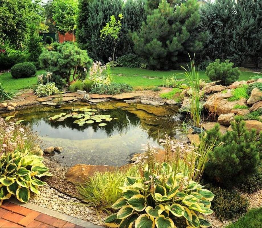 Сады и клумбы 11