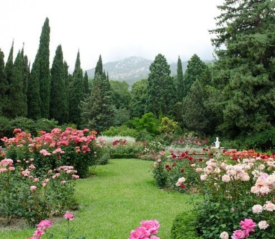 Сады и клумбы 100