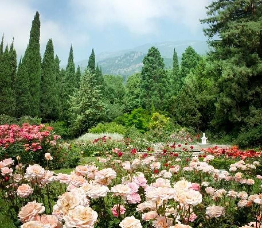 Сады и клумбы 103