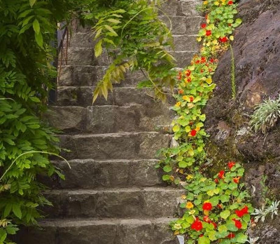 Сады и клумбы 106