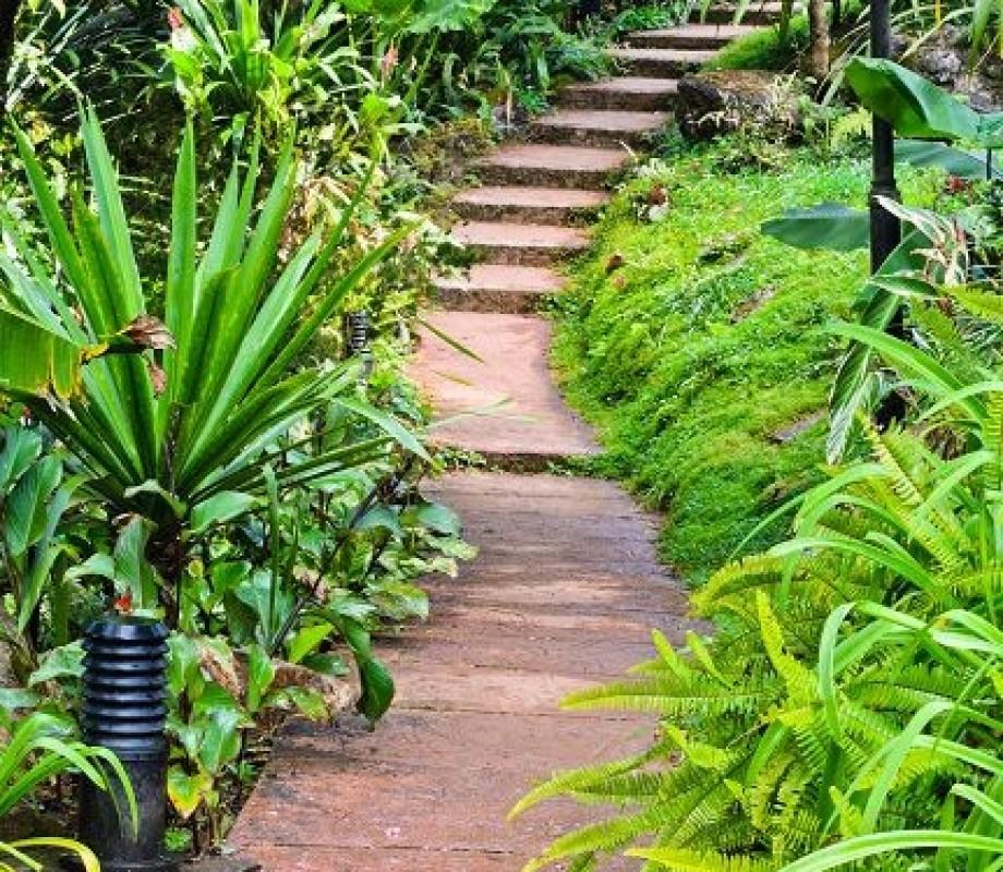 Сады и клумбы 108